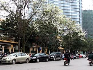 Cho thuê xe tải giá rẻ tại phố Hoàng Đạo Thành